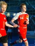 Essen - Am Hallo - DKB Handball Zweite Bundesliga - TuSEM - Wilhelmshaven 27:29 (11:16) (170602-tusem-whv-034.jpg)