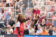 Essen - Am Hallo - DKB Handball Zweite Bundesliga - TuSEM - Wilhelmshaven 27:29 (11:16) (170602-tusem-whv-054.jpg)