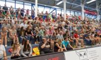 Essen - Am Hallo - DKB Handball Zweite Bundesliga - TuSEM - Wilhelmshaven 27:29 (11:16) (170602-tusem-whv-071.jpg)