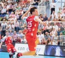 Essen - Am Hallo - DKB Handball Zweite Bundesliga - TuSEM - Wilhelmshaven 27:29 (11:16) (170602-tusem-whv-103.jpg)