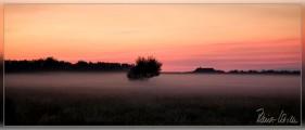 080705-nebel-059.jpg