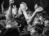 Essen - Rockpalast 7.1.1979 - Nils Lofgren (19790107-rockpalast-nils-lofgren-007.jpg)